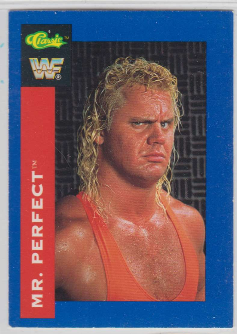 1991 Classic WWF Superstars MR Perfect #113 card front image