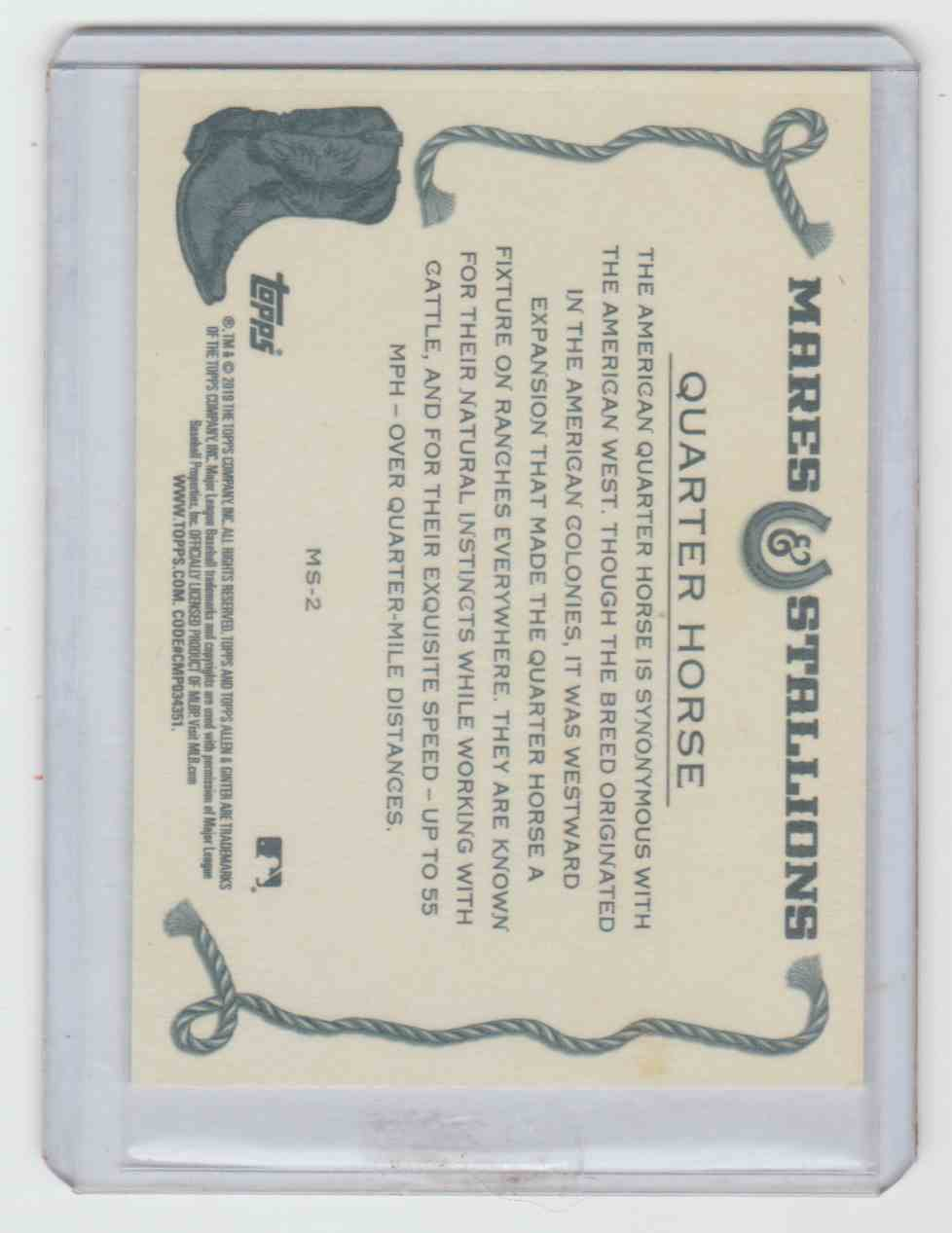 2019 Allen And Ginter Mares And Stallions Quarter Horse #MS-2 card back image