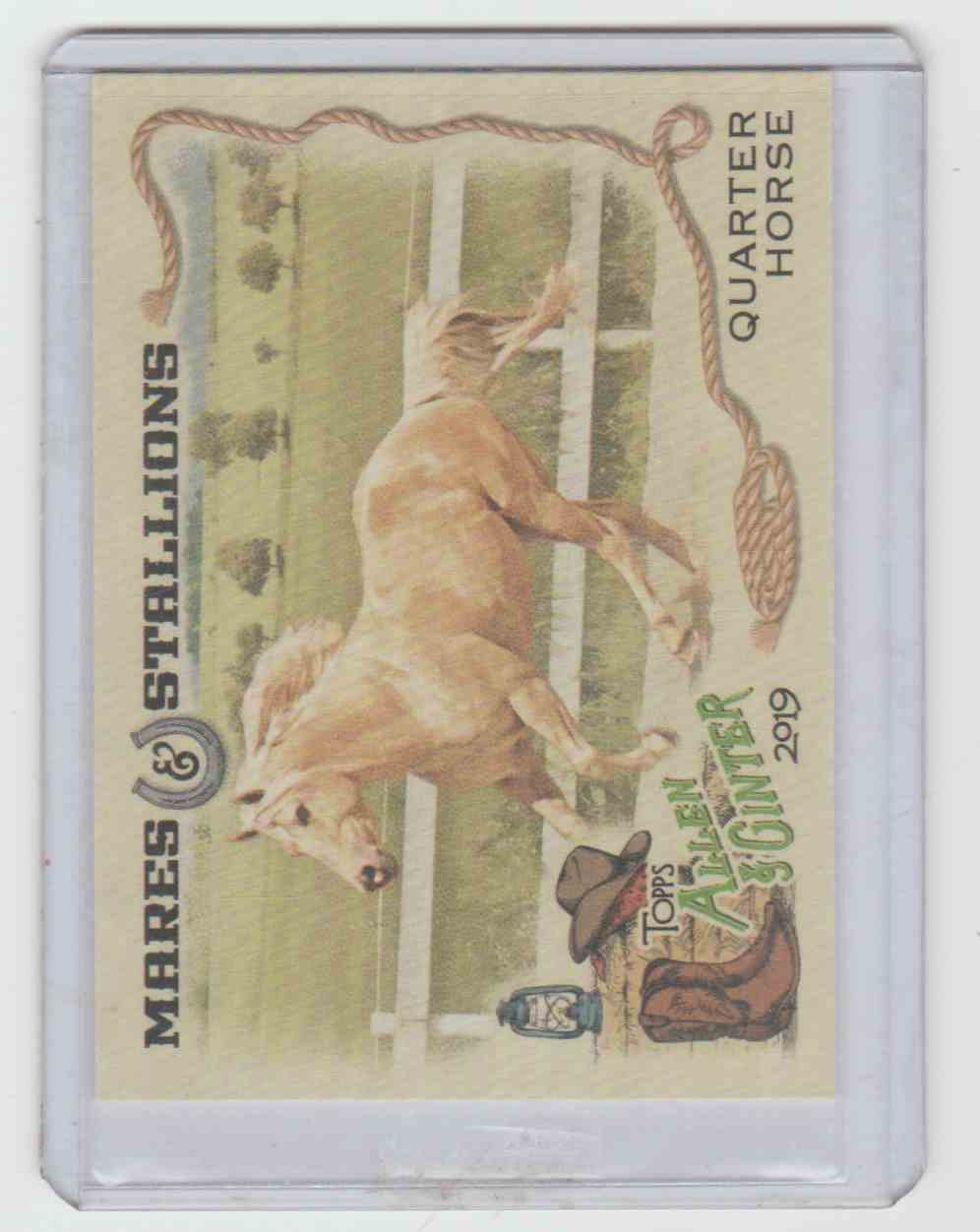 2019 Allen And Ginter Mares And Stallions Quarter Horse #MS-2 card front image