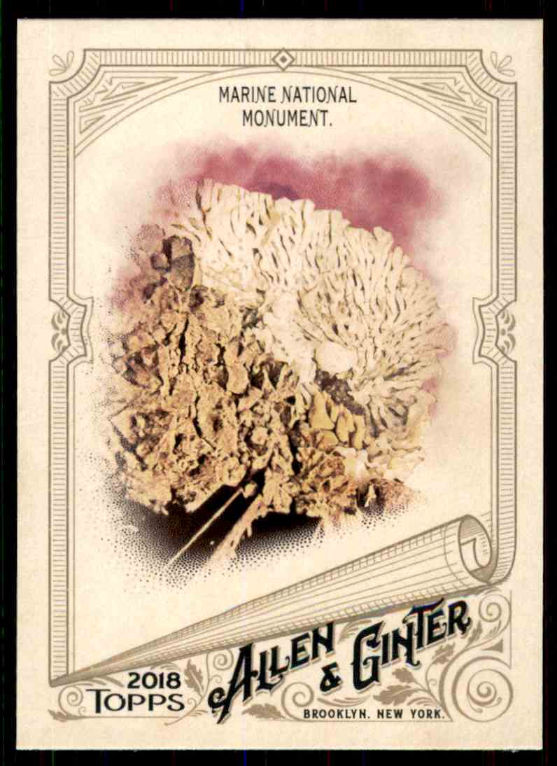 2018 Topps Allen & Ginter Marine National Monument #84 card front image