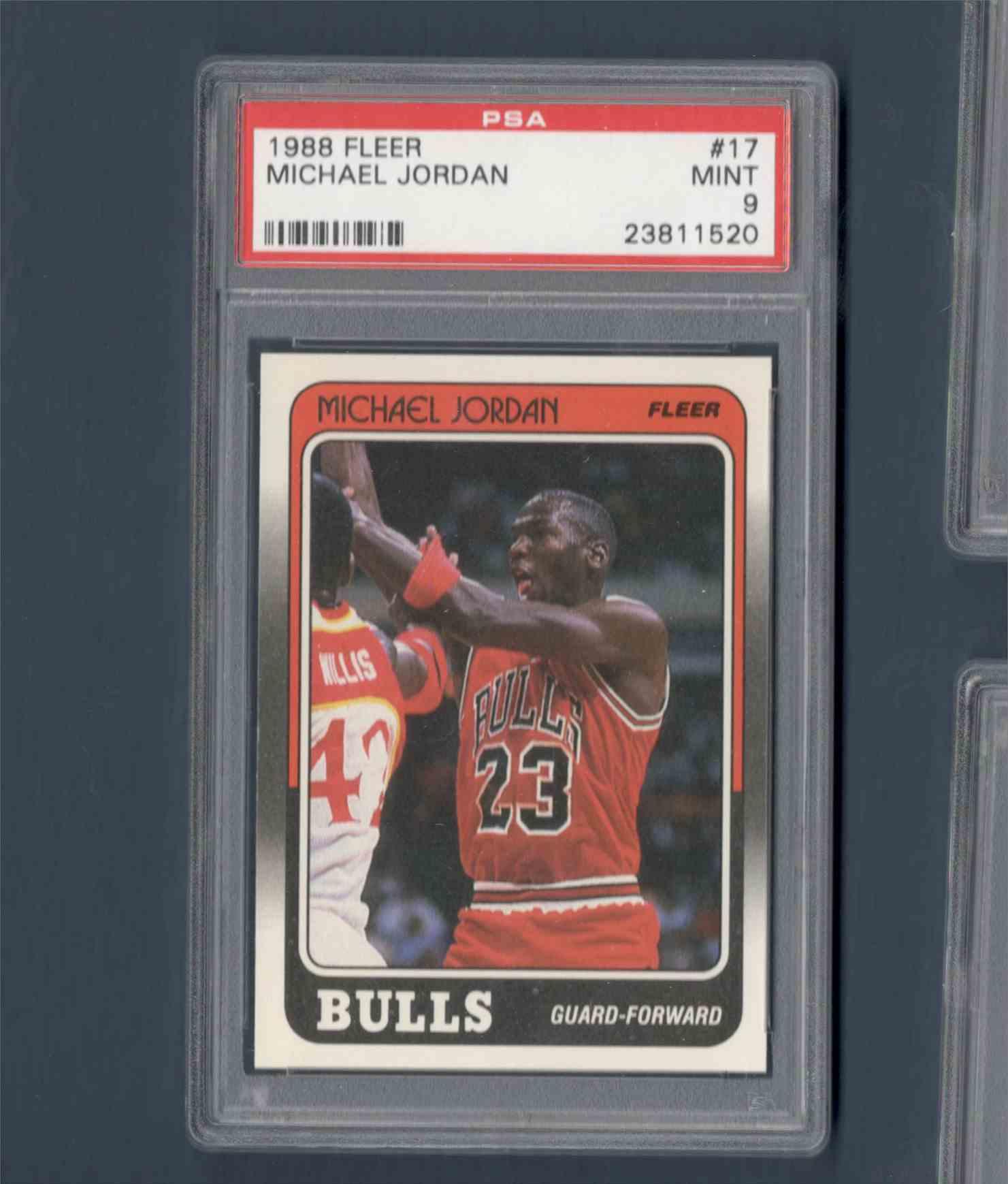1988-89 Fleer Michael Jordany #17 card front image