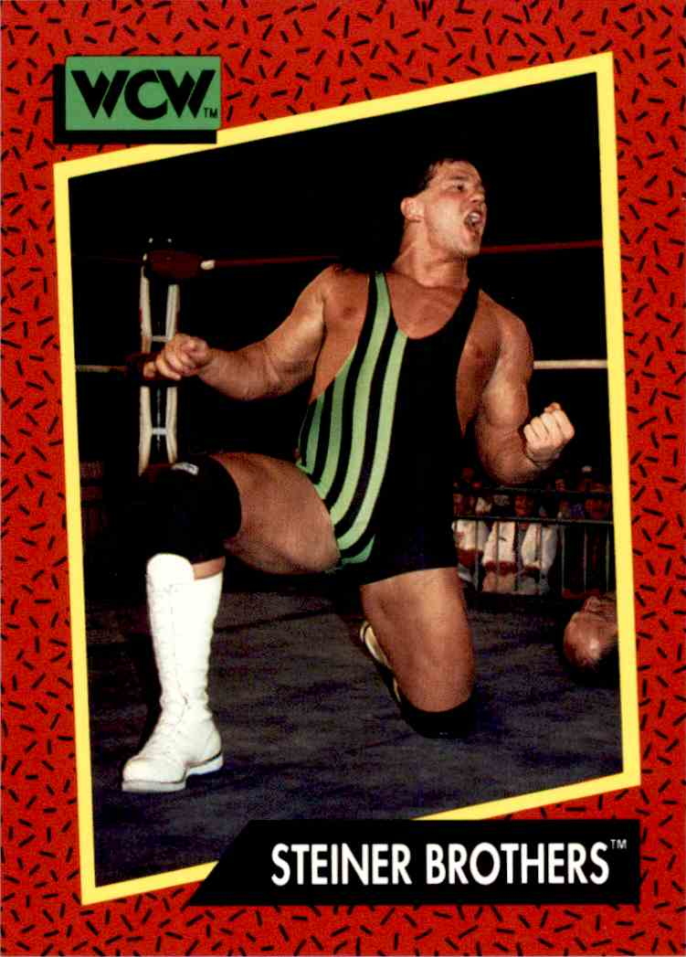 1991 Wcw Steiner Brothers #113 card front image