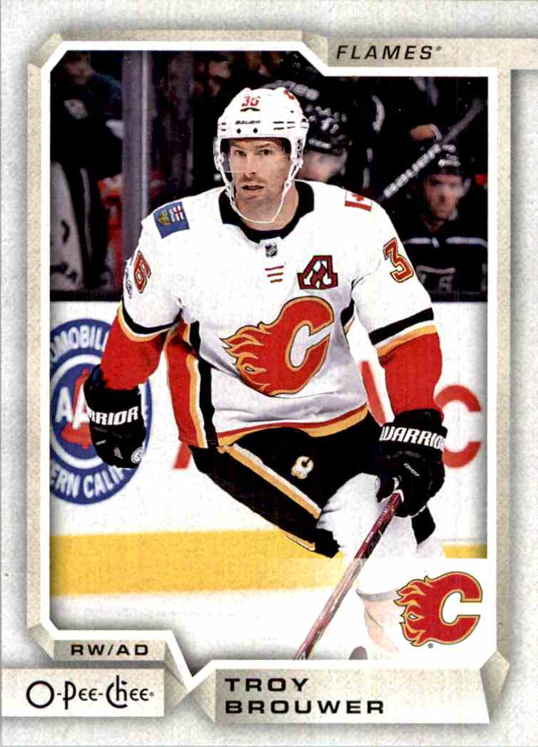 2018-19 O-Pee-Chee Troy Brouwer #387 card front image